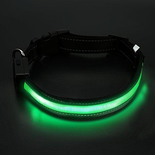 LED Leuchthalsband Hunde Halsband wasserdicht- USB& Solar wiederaufladbar- Anicoll 45-63cm längeverstellbar Nylon Sicherheit Blinkende Halsbänder (Led-halsband Wasserdicht)