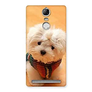 Neo World Confused Cute Dog Back Case Cover for Vibe K5 Note