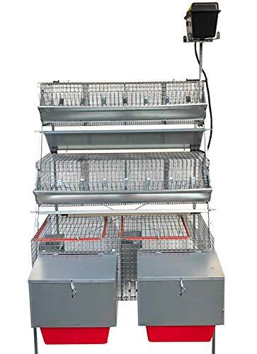 Gabbia conigli gm1 plus conigliera a 3 piani mista 2 fattrici + 8 celle ingrasso. cm l 105 x p 106 x h 160