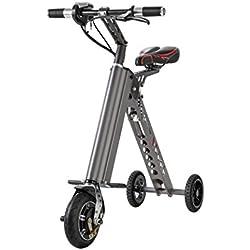 Scooter Eléctrico plegable (metálico gris)
