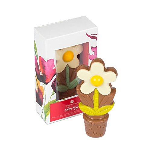 ChocoDaisy - Weiß - Blume aus Schokolade   Essbare Dekoration   Geschenk   Muttertag   Valentinstag   Geschenkidee   Frauen   Männer   Geburtstag   Kinder   Tischdekoration (Blumen Schokolade Und)