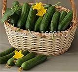 embalaje original cebolletas semillas (semillas de puerro) cebolletas amarillas perennes cebollino caldo de cultivo, semillas de hortalizas balcón - 50 PC