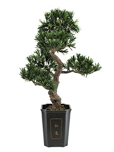 Unbekannt Bonsai Podocarpus 313 Spitzen 80cm, Kunstpflanze