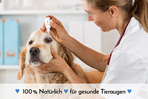 AUGENTROPFEN, 100 % natürlich, für Hunde / Katzen / Pferde / Kleintiere, 10 ml, alkoholfrei, - 3