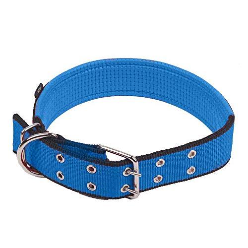 Paws Hund Anti Bark Halsband Nylon Komfortabel Für Kleine/Mittlere / Große Hunde, Blau,M -
