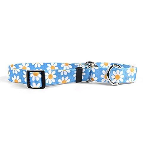 Yellow Dog Design Blue Daisy Martingale Dog Collar 3/4