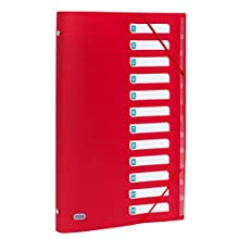 Elba Urban in plastica Cartelletta DIN A4 con 12 scomparti, confezione da con 5 blickdichten colori assortiti 12 scomparti rot