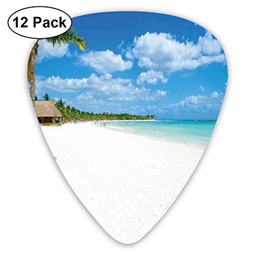 Guitar Picks - Abstract Art Colorful Designs,Tropical Exotic Seashore With Palm Trees And Clear Sky Island Nature Summertime,Unique Guitar Gift,For Bass Electric & Acoustic Guitars-12 Pack -