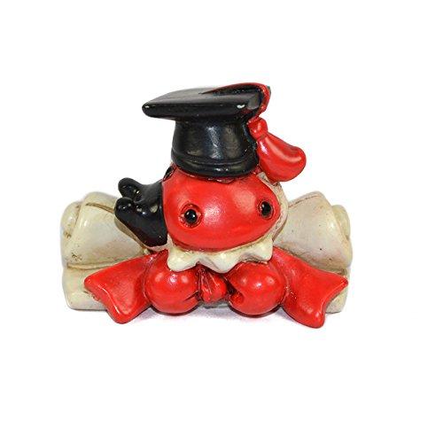 24 pergamena bomboniera laurea rosso tocco cappello confetti sacchetto fiocco