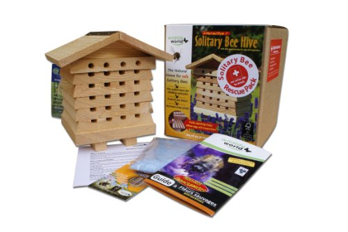 wildlife-world-solitary-bee-care-pack