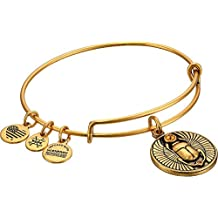 Pulsera ALEX AND ANI A16EBSCRG