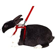 Arnés para conejos, diversos colores Longitud: 140 cm