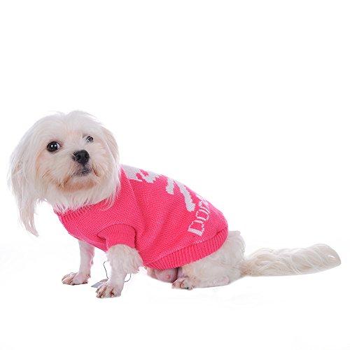 arm Weich Welpen Kätzchen Hund Jumper Knit Rollkragen Pullover Coat Totenkopf Muster (Halloween Rollkragen)