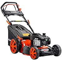 CORTACÉSPED Motor Briggs and Stratton CC446BS