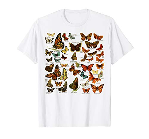 Butterflies Butterfly Collection scientific entomology  T-Shirt (Scientific American Biology)