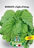 Sementi orticole di qualità l'ortolano in busta termosaldata (160 varietà) (BASILICO A FOGLIA DI LATTUGA)