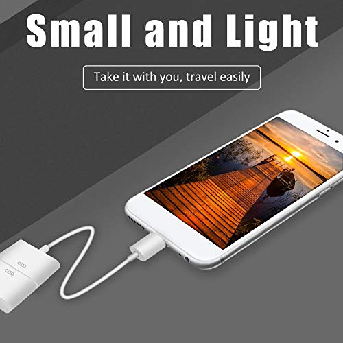 Williamly 8P Auf 30P Adapterkabel Kompatibel Mit iPhone Unterstützung Synchronisation Und Aufladen Ipod-mini-auto-docking-station