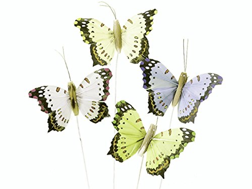 pack-4-butterflies-pink-blue-beige-green