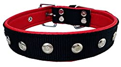 Petshop7 Nylon Star Studs with Leather soft Padding Dog Collar 1.25 In Black - Large