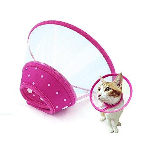 HpyAlwys - Collar de plástico para Perro médico y Gato con Licencia para la recuperación de heridas y heridas, para Mascotas Medianas