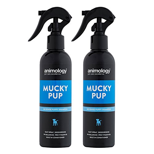 Animology Mucky Pup Trockenshampoo für Hunde, 250ml