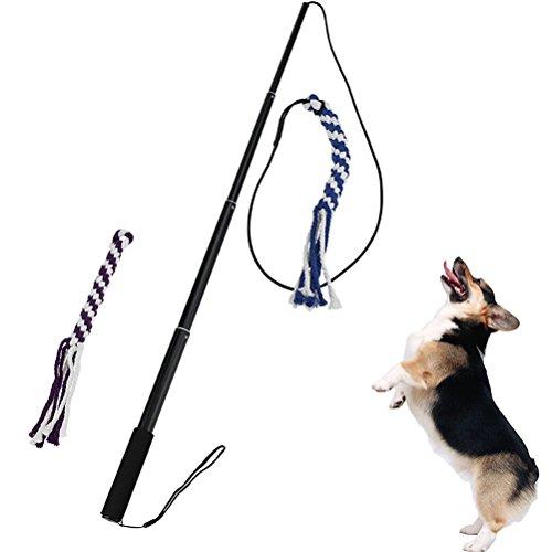 UEETEK Interaktive Hundespielzeug ausziehbare Flirt Pole Spaß Kauspielzeug für Haustiere Größe L (schwarz)