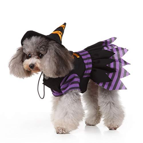 Balacoo Hund Hexe kostüm-Kleiner Hund Halloween kostüme lustiges Haustier kostüm kreative Hexe mit Hut Cosplay Kleidung für welpen Hund hundegröße s (Kreative Kostüm Bilder)