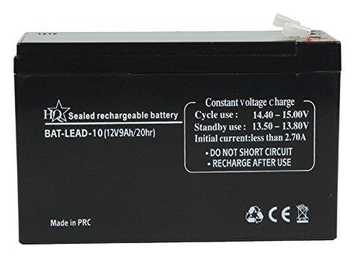 HQ BAT-LEAD-10 batteria ricaricabile