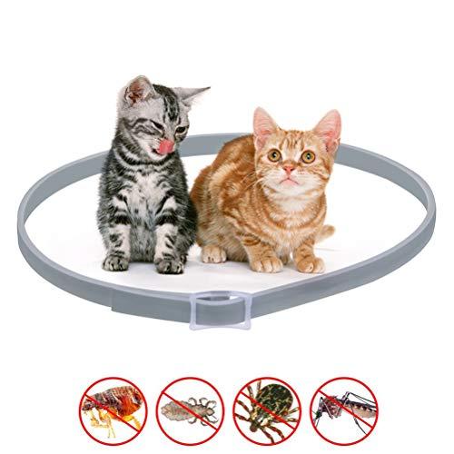 Hihey Zeckenhalsband mit 8 Monate Kontrolle Schutz für Mittlere und große Hunde Verstellbar Größe und Wasserfest Anti-Zecken und Anti-Flöhe -
