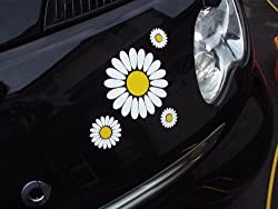 A set of high Quality external vinyl sticker for bedroom or your car window, door, etc. These are supplied with yellow and white petals centres just to make your vehicle that extra bit special. Top Quality weatherproof for at least five years These a...