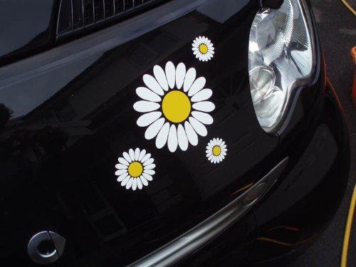 daisy-flower-stickers-de-voiture-blanc