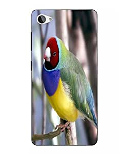 Snazzy Bird Printed Colorful Hard Back Cover For Lenovo Z2 Plus
