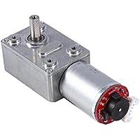 DC 12V Motor de Reducción de Velocidad con Esconder Motor de Turbina de Reducción de Velocidad Motor de Engranajes de Turbo Bloqueo Automático 10/20/30/40/100RPM (40RPM)