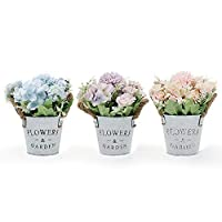 GoMaihe Artificial Hydrangea Flowers Plants Set of 3 With Metal Pot, 11 × 20cm Small Indoor and Outdoor Fake Plants, Roses Flowers for House Office Desk Kitchen Decoration, Exquisite New House Gift