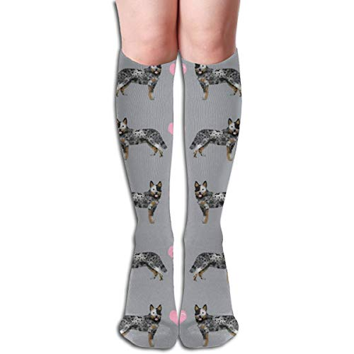 Women's Fancy Design Stocking Australian Cattle Dog Blue Heeler Love Hearts Grey Multi Colorful Patterned Knee High Socks 50cm(19.6Inchs) -