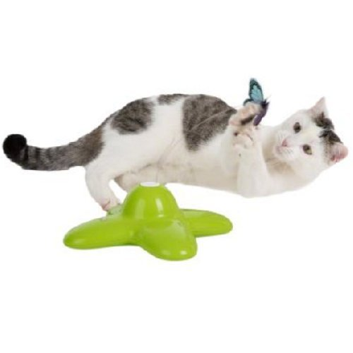 Cat Toy Activity Chase Game Kitten Fun Interactive Of Chasing After The Fluttering Erfly Battery Operated