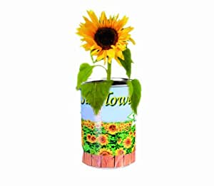 Grow Your Own Sun Flower - A Gardeners Novelty Gift - Ladies / Womans Perfect Ideal Christmas Present / Gift / Stocking Filler Ideal Gift for The Gardener