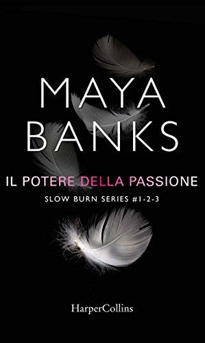 Slow burn - Il potere della passione: Proteggimi   Tienimi   Salvami di [Banks, Maya]