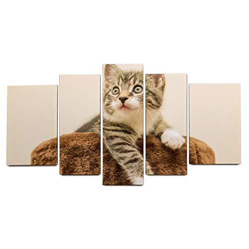 ART VVIES Für Hauptdekorationen Kleine Makrele Kätzchen Hauskatze Haustier Holz Gerahmte Leinwand mit Haken Kunst Malerei Installiert Wandbild