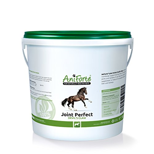 AniForte Joint Perfect Devils Claw 1000 g- natural product for horses