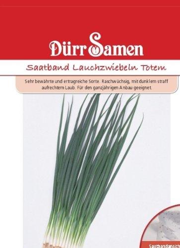 Lauchsamen – Lauchzwiebeln Totem (Saatband) von Dürr-Samen