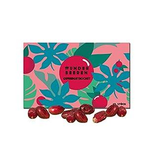 10 Gefriergetrocknete Wunder Beeren/Miracle Berry/Miracle Fruit mit Samen – Agarbatti (10)