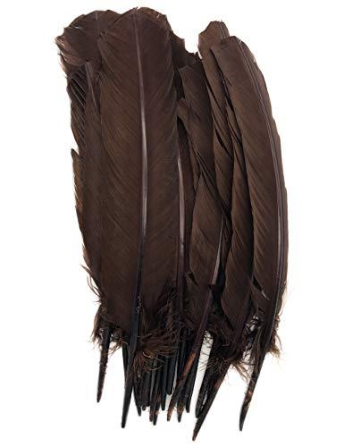 ERGEOB 20 stück Truthahnfedern basteln Federn Bogen Federn 20-30cm (07 Kaffee)