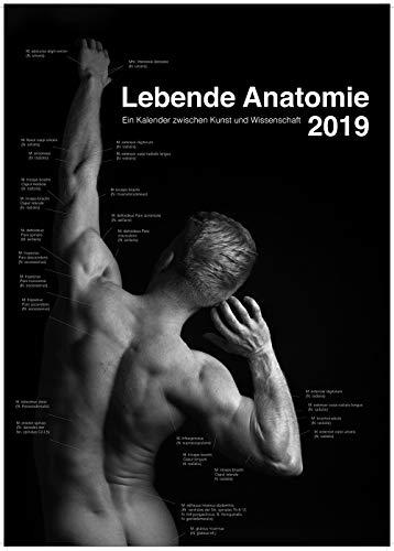 Lebende Anatomie 2019: Ein Kalender zwischen Kunst und Wissenschaft (Lebende Anatomie / Ein Kalender zwischen Kunst und Wissenschaft) - Kalender Anatomie