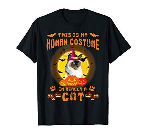 Frauen Ragdoll Kostüm - This is my human costume i'm really a Ragdoll Cat halloween T-Shirt