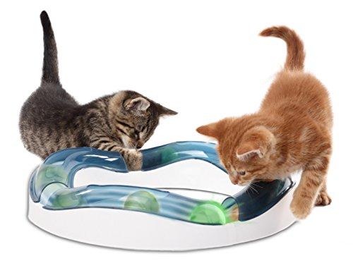 Katzenspielzeug: Catit Design Senses Tempo-Spielschiene -