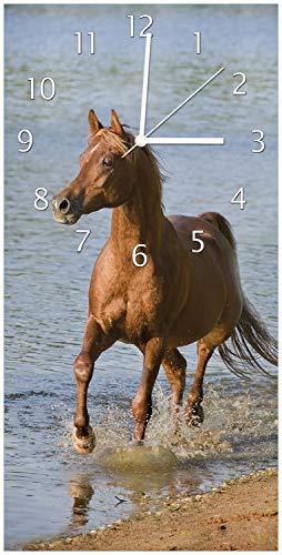 Wallario Design Wanduhr Braunes Pferd am Meer Araber am Wasser aus Acrylglas, Größe 30 x 60 cm, weiße Zeiger