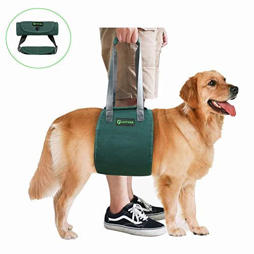 RockPet Soporte para Perros con Manija para la Ayuda Canina, Aprobado por los Veterinarios. Arnés para Levantar Perros Durante la Rehabilitación (L,Verde)
