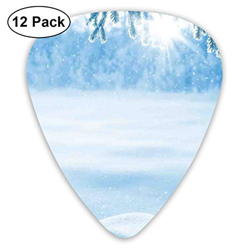 Guitar Picks - Abstract Art Colorful Designs,Psychedelic Winter Background With Snow Drifts And Cold Pine Branch Image,Unique Guitar Gift,For Bass Electric & Acoustic Guitars-12 Pack -