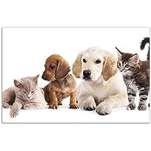 80x52cm Hundewelpen Katzenjunge Wallario Herdabdeckplatte 1-teilig aus Glas